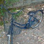 自転車をちょうだいしました