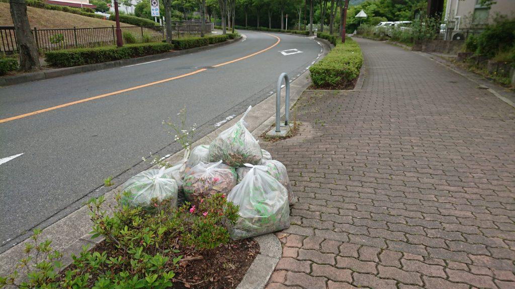 20180610自治会の公園清掃に参加してきました